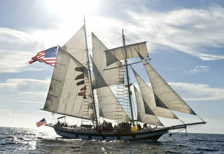 Corporate Yacht Charters - Tall Ship Sailing